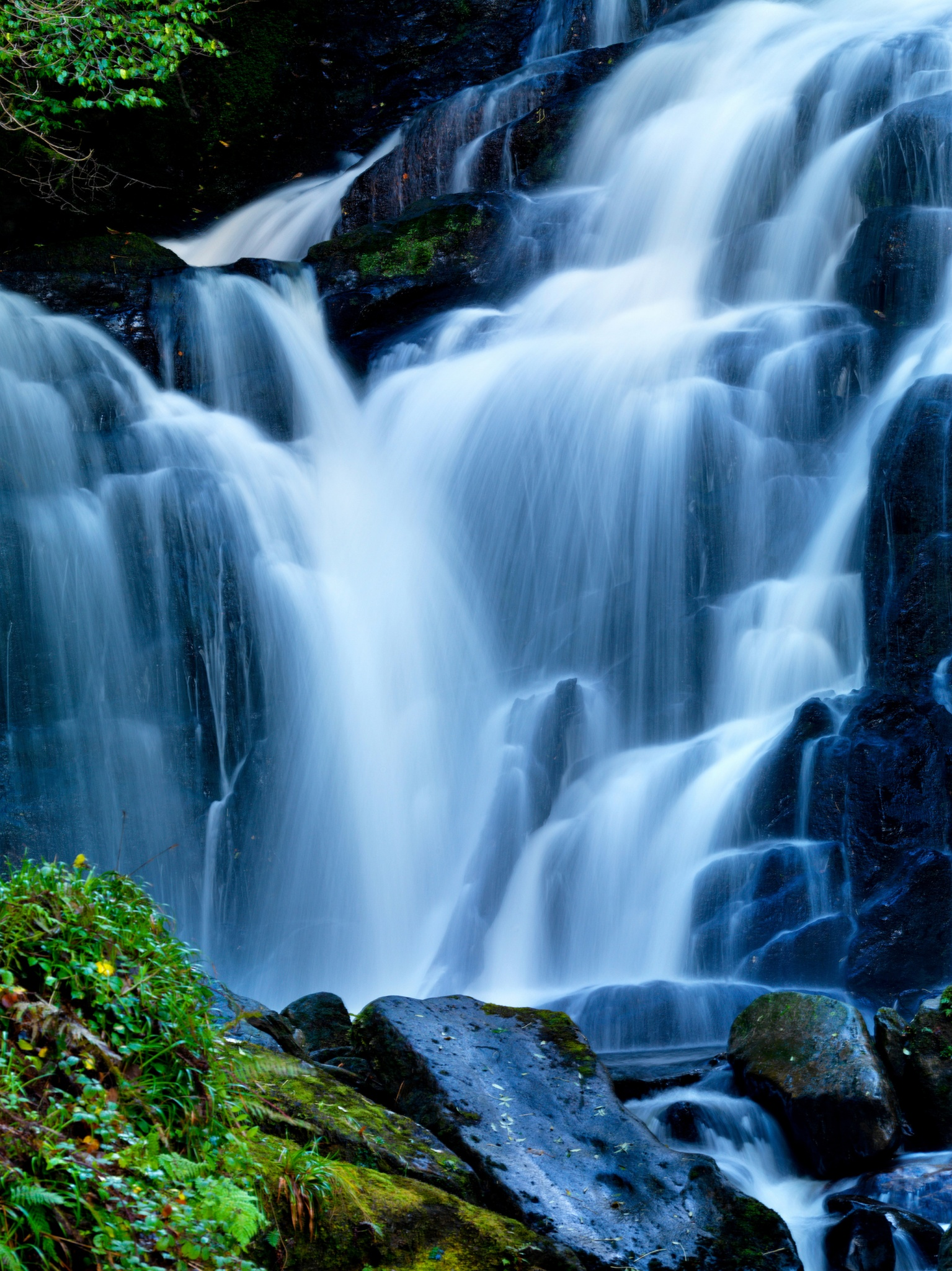 Discover Kerry | Killarney | Torc Waterfall